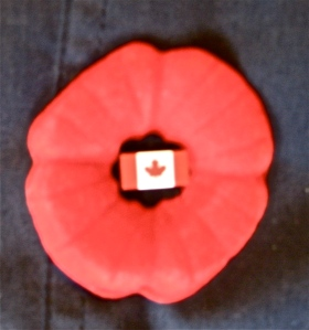 Remembrance Day poppy, Canada. (Kathleen Kenna photo)