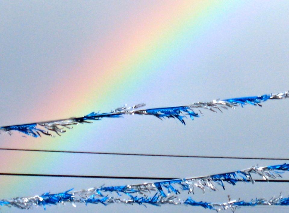 Southern Oregon rainbow. (Kathleen Kenna photo)