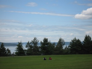 Green near Puget Sound, WA. (Kathleen Kenna photo)