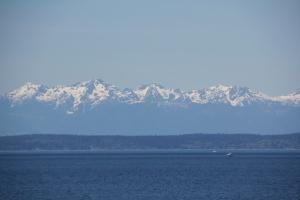 Puget Sound, WA. (Hadi Dadashian photo)