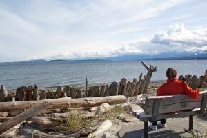 Vancouver Island, B.C. (Hadi Dadashian photo)