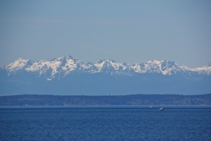 Clear day on South Puget Sound, WA. (Hadi Dadashian photo)