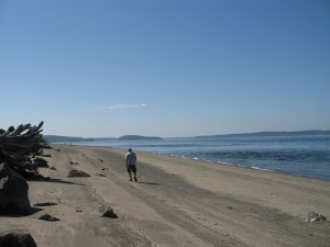 South Puget Sound, WA beach. (Kathleen Kenna photo)